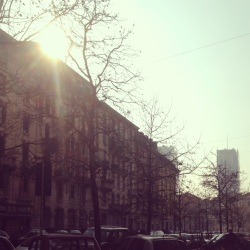 Sun peeking through the fog, Milan. Photo by Sara Rosso.